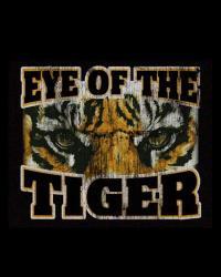Stagione 17/18 fantAvigliano: Eye Of The Tiger
